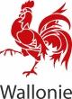 Nouveau logo wallonie