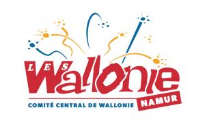 """Résultat de recherche d'images pour """"fêtes de wallonie namur 2019 affiches photos"""""""